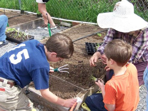 A Master Gardener works with two day-camp attendees at Thurston County's Dirt Works demonstration garden.